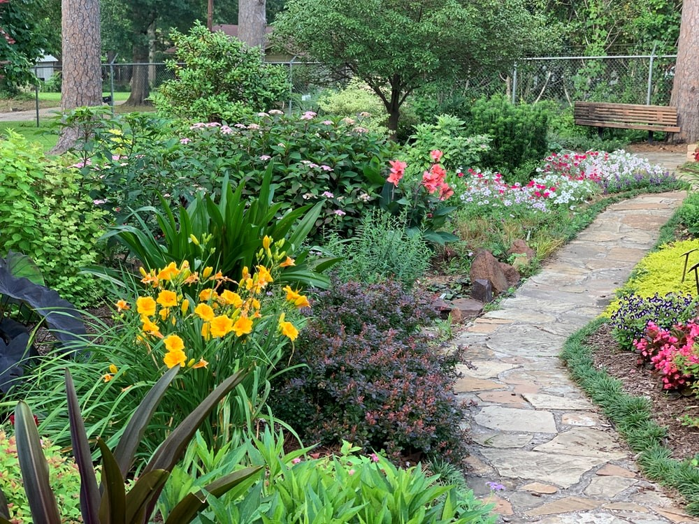 A natural stone pathway in a garden